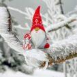 Encuentro navideño